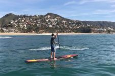 PADDLING WITH A GRAY WHALE IN LAGUNA BEACH
