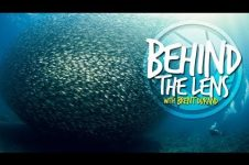 BEHIND THE LENS OF UNDERWATER PHOTOGRAPHER BRENT DURAND