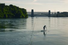 PSYCHED PADDLEBOARDING – SUP SAFARI