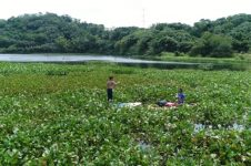 EXPLORATION OF SUP IN THE WATERS OF EMEI LAKE, HSINCHU