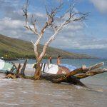 11 Maui - Manuela 1500px