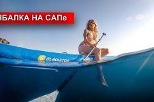 SEA FISHING IN PARADISE