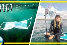 PADDLE BOARDING FOR POLLUTION IN NORTH CORNWALL